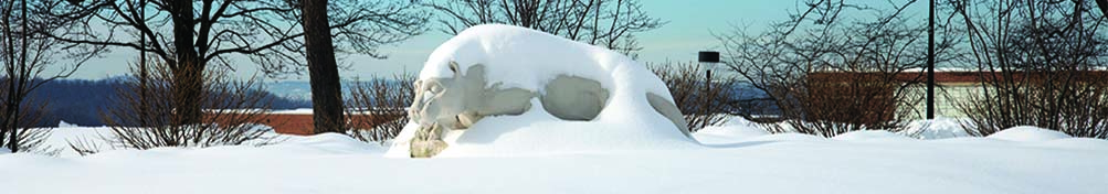 Lion Shrine covered in snow.